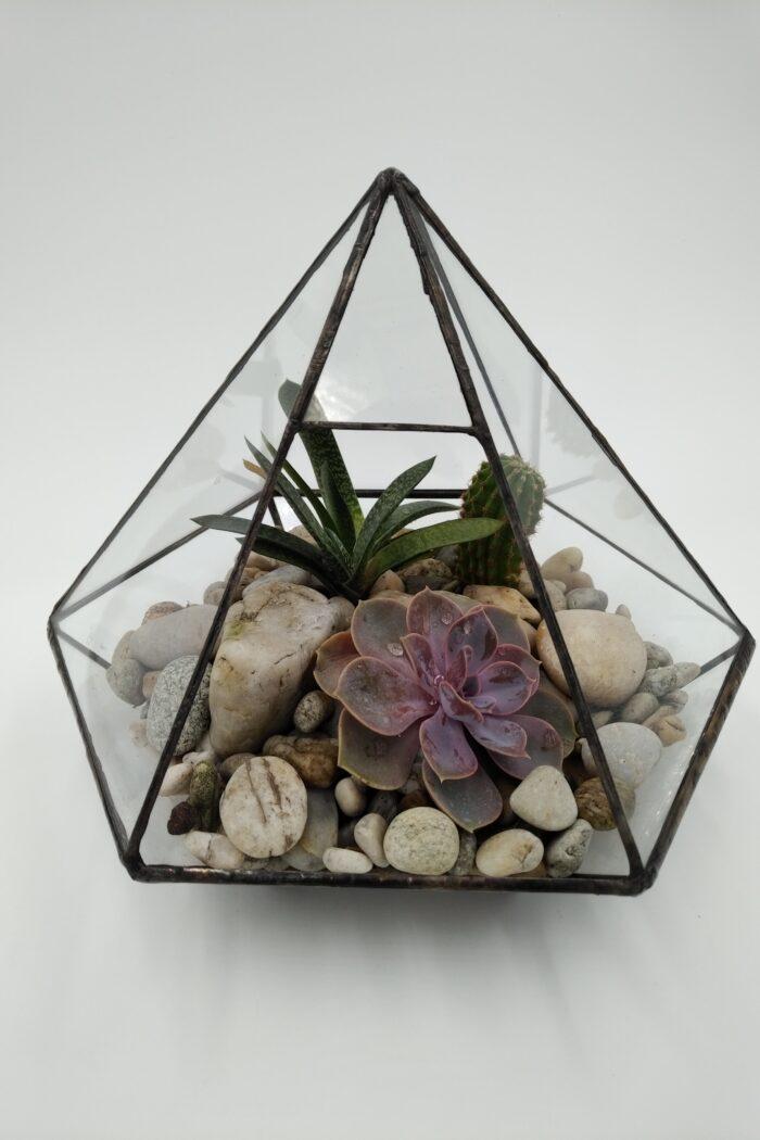 skleněné florárium pro sukulenty